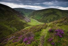 Hidden treasure by Kenny Muir. Looking down towards Mennock Pass in the heart of the Southern Uplands, Dumfries and Galloway, Scotland. The road leads up to Wanlockhead, the highest village in Scotland.