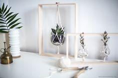 Do it yourself Création cadres végétaux handmade