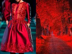 This is inspired by Liliya Hudyakova, creating stunning collages for the project Fashion & Nature.
