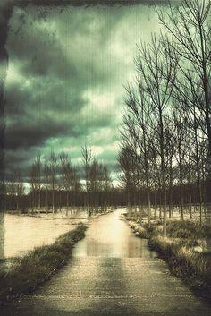Llueve sobre mojado | Flickr - Photo Sharing!