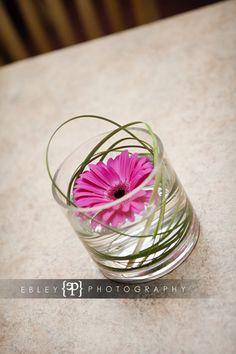 Hot Pink Gerbera Daisy with Bear Grass