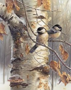 Stunning Wildlife Paintings by Denis Mayer Jr.