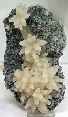 Calcite on Chalcedony / Mineral Friends <3