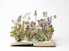 Spring is sprung, thanks to artist Su Blackwell's gorgeous book sculpture. She has many more at http://www.sublackwell.co.uk/portfolio-book-cut-sculpture/