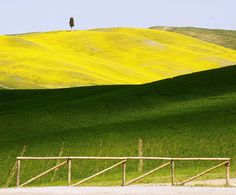 Primavera nelle crete