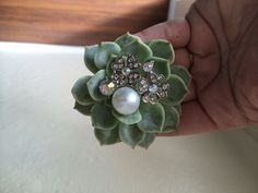 Succulent brooch by Butterfly Petals