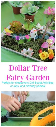 Learning how to build a fairy garden is a great activity for parties, a group, or just a fun idea for home!!