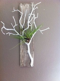 restaurant deko Makers Connect is the place for Craft Classes! White Branches, Tree Branches, Air Plant Display, Deco Nature, Branch Decor, Driftwood Crafts, Deco Floral, Diy Home Crafts, Nature Crafts