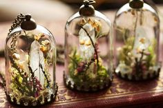 "Kay Bells lets you take a little bit of magic with you wherever you go. The Cork, Ireland based maker handcrafts tiny terrariums ""using a range of strange and beautiful curiosities, found in the woods and on the mountain sides, combed from the windswept beaches and picked in the wild meadows."" But that's not all–Bells also does custom pieces, if you're willing to send her your precious memories."