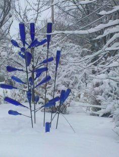 My blue bottle tree
