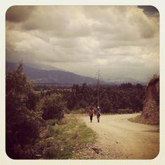Walk-the-walk.