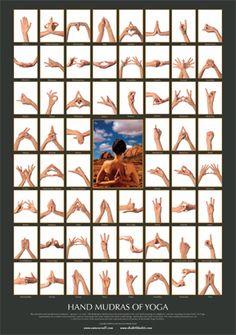 Workout Challenge Discover Mudras of Yoga - Poster Shakti Bhakti Mudras of Yoga - Poster Shakti Bhakti Ayurveda, Yoga Bewegungen, Hand Mudras, Les Chakras, Qigong, Pranayama, Yoga Inspiration, Reiki, Yoga Fitness