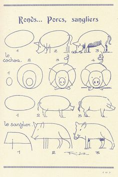 Today's Drawing Class 101: How to draw animals || How to Draw Pigs