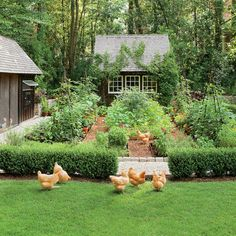 Dream Garden! It Even Has a Chicken Coop - Southern Living