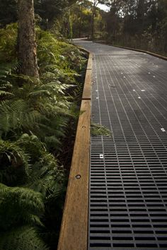 Multi-use trail through ecologically sensitive area - grate