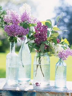 Lilacs, the perfect bouquet for spring! More about growing and displaying lilacs: http://www.midwestliving.com/garden/flowers/lilac-flowers/