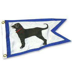 Black dog~ Marthas Vineyard