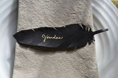 gold pen on black feather