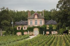 Stitchnquilt: Burgundy, France Wine Country