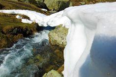Las aguas del río Carrión siguen su marcha a poca distancia de su nacimiento en la laguna de fuentes carrionas que se encuentra en el parque natural fuentes carrionas y fuentes cobre, montaña palentina.