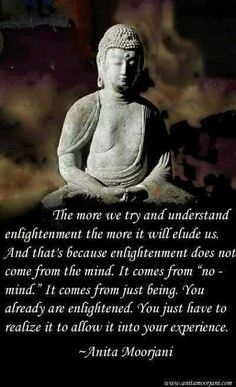 """Enlightenment does not come from the mind. It comes from """"no-mind"""" - Anita Moorjani Buddhist Quotes, Spiritual Quotes, Peace Quotes, Buddhist Wisdom, Positive Quotes, Wild Quotes, Strong Quotes, Spiritual Enlightenment, Spiritual Awakening"""