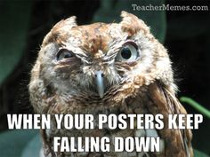 When you walk into your classroom and all the posters you spent hours putting up the day before are now on the floor.