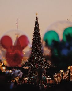 Uploaded by Madeline. Find images and videos about disney, christmas and mickey on We Heart It - the app to get lost in what you love. Disneyland Paris, Disneyland Christmas, Disney World Christmas, Disneyland Resort, Disney Holidays, Disneyland Photos, Disneyland California, Disney Trips, Disney Parks