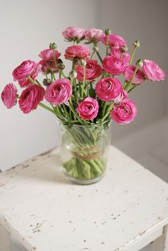 ranunculus to brighten any room