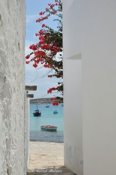 The small view to the sea Bougainvillea, Greek Islands, Homeland, More Photos, Beautiful Images, Greece, Traveling, Europe, Sea