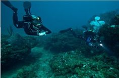 Three initiatives show way for diving tourism in Greece
