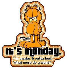 Garfield Funny Haha!