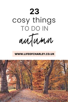 Today I'm sharing 23 amazingly cosy things to do in autumn with your friends, as a couple or solo! Your Best Life Now, Life Is Good, You Can Do, Are You Happy, Autumn, Fall, Cosy, Things To Do, Couple