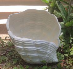 Shell planter dish garden beach decor white house plant by muddyme