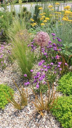 Beth Chatto: The Drought Resistant Garden – RHS Hampton Court 2019 Seaside Garden, Coastal Gardens, Garden Cottage, Small Gardens, Raised Gardens, Prairie Garden, Dry Garden, Gravel Garden, Gravel Front Garden Ideas