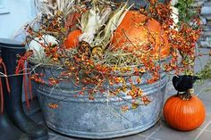 Fall Front Door or Front Porch Ideas - If you are looking for a change from Halloween decorations, here is a roundup of beautiful exterior fall decor. Thanksgiving Decorations, Seasonal Decor, Halloween Decorations, Holiday Decor, Spooky Decor, Fall Porch Decorations, Fall Yard Decor, Fall Harvest Decorations, Wedding Decorations