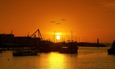Sector Pesquero, Antofagasta, Chile