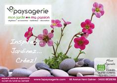Publicité pour PQR Flyers, Plants, Open House, Posters, Ruffles, Plant, Leaflets, Planets