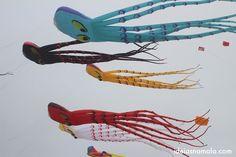 O festival da pipa em Berkeley Berkeley's kite festival  Saiba mais no: http://ideiasnamala.com/2013/07/30/berkeley-o-festival-da-pipa/