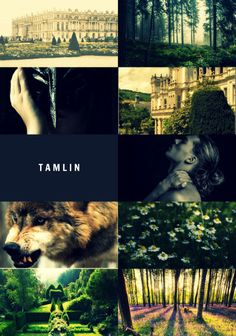 For the name in this picture is should say Tamlin the Tool....get it right person who made this.