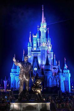 Beautiful picture of Walt Disney World. Kissimmee, Florida