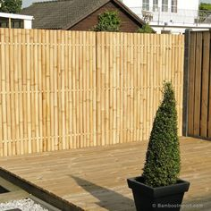 Discover the best Bamboo Screening. Buy your Giant Bamboo Fence Panel 180 x 180 cm at Bamboo Import Europe. Guaranteed the lowest price! Backyard Vegetable Gardens, Indoor Garden, Outdoor Gardens, Bamboo Privacy Fence, Bamboo Screening Fence, Chain Fence, Giant Bamboo, Backyard Bar, Backyard Fences