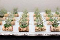 25 Wine Cork Air Plant Wedding Favor Magnets | Etsy Wine Craft, Wine Cork Crafts, Wine Bottle Crafts, Wedding Favours Magnets, Plant Wedding Favors, Fundraising Crafts, Wine Cork Art, Wine Decor, Paper Crafts Origami