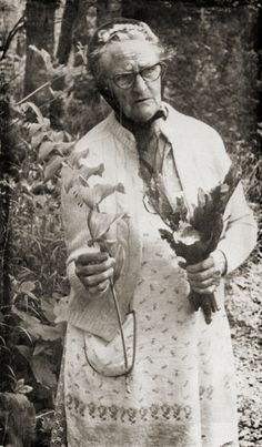 """Ella Dunn, Granny Doctor from the Ozarks who lived to be 104 years old """"learned about medicinal herbs from her father. However, some of the herbs he prepared and used, such as digitalis known as foxglove, Ella did not use because these herbs became readily available already prepared in the drugstore. """"Even though my husband had heart trouble,"""" she said, """"I never used digitalis. I don't even know how my father prepared it because we could buy it already prepared."""""""