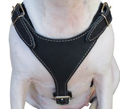 Real Leather Dog Harness 2530 Chest Size 1 Wide by UltimateCollars, $38.90