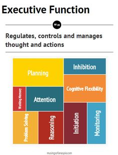 Executive function is a broad term that refers to the cognitive processes that help us regulate,  control and manage our thoughts and actions. It includes planning, working memory, attention, problem solving, verbal reasoning, inhibition, cognitive flexibility, initiation of actions and monitoring of actions.  That's a nice concise definition, in theory, but what does EF look like in real life?