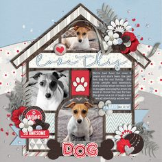 Used the following from the Sweet Shoppe: *NEW* Template: Single 161: Love This Dog - by Cindy Schneider *NEW* A Winter to Remember by Amanda Yi, Two Tiny Turtles and Studio Basic Designs Layered Cards - Dogs - by Cindy Schneider