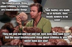 The Troublesome Thing about Tribbles - and if you don't read this singing the Tigger song, then you just don't smile enough !!