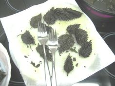 Brennnessel-Chips (vegane Butter nehmen)