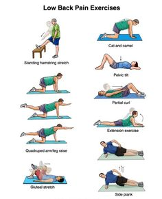 EXCLUSIVE PHYSIOTHERAPY GUIDE FOR PHYSIOTHERAPY STUDENTS: EXERCISE FOR BACK PAIN