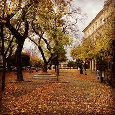 Instagram photo by @melisacherrygirl (Passion 4 photography 📲/📷😍)   Statigram Bratislava, Cool Pictures, Sidewalk, Passion, Photography, Instagram, Photograph, Side Walkway, Fotografie